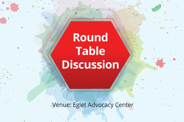 Jury Analyst Round Table Discussions